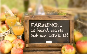 "The Trial & Error of ""FARMER-HOOD"""